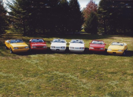 Feature Mustang Collection