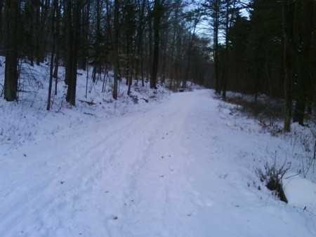 Snowy Running Trail